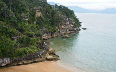 Alles over Bako Nationaal Park op Maleisisch Borneo