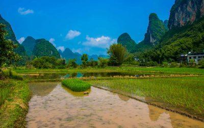 Traveldiary China #2: prachtige rijstvelden en door naar Fenghuang