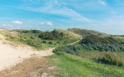 NS wandeling in het Noord-Hollands Duinreservaat: van Castricum naar Egmond aan Zee
