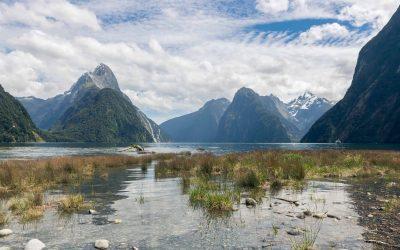 Milford Sound Cruise; de mooiste boottocht van Nieuw-Zeeland