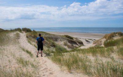 Wandelen in de Kennemerduinen: van Santpoort Noord naar Overveen