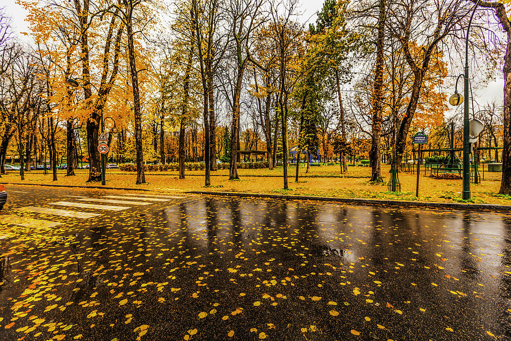 autumn_eyecare_pittsburgh.jpg
