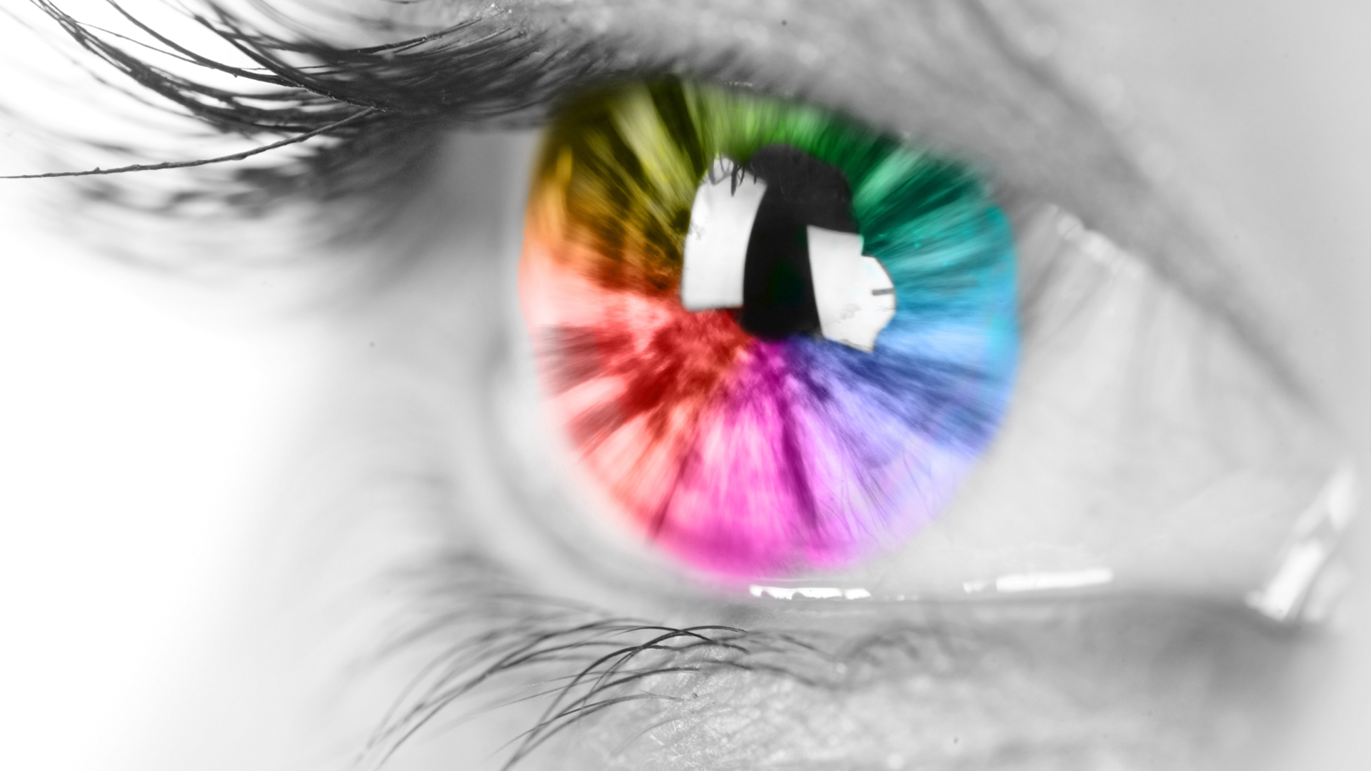 Everett & Hurite Ophthalmic Association Banner