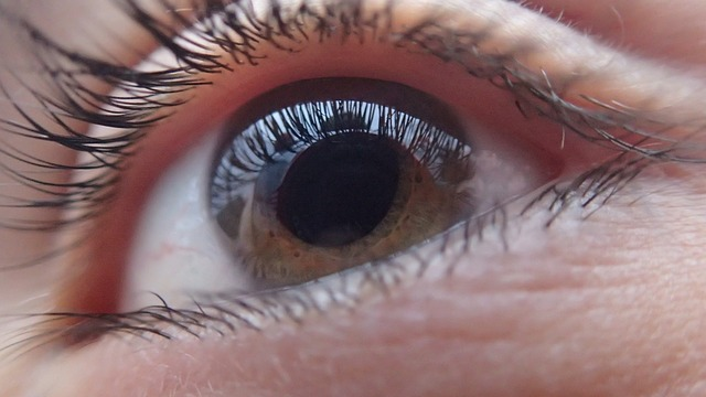 eye-321961_640_1.jpg