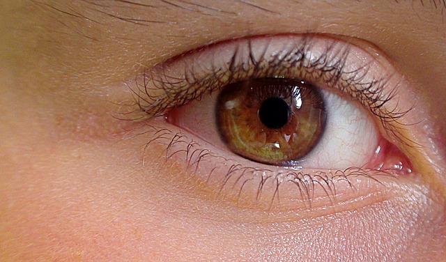 eye-419646_640.jpg