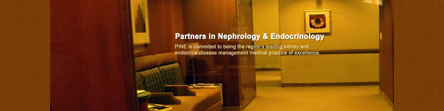 Partners In Nephrology & Endocrinology Banner