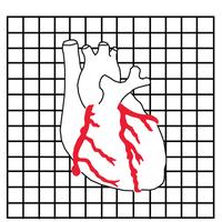 Three Rivers Cardiac Institute  Avatar