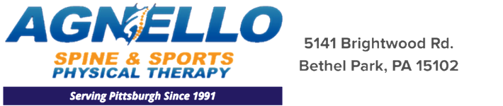 Agnello Spine & Sports Physical Therapy Logo