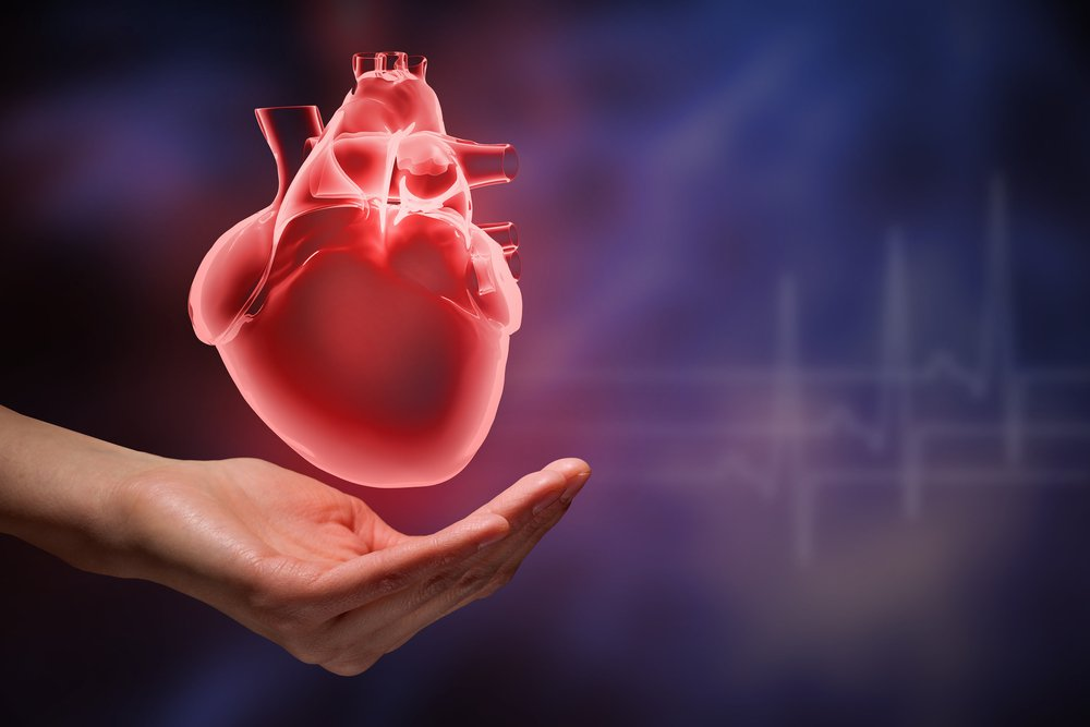 hearthealth.jpeg (shutterstock_324804920.webp)
