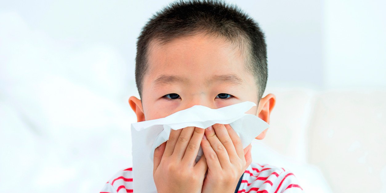 WEB-4_Blog_Allergies-blog_image.jpeg (WEB-4_Blog_Allergies-blog_image.webp)