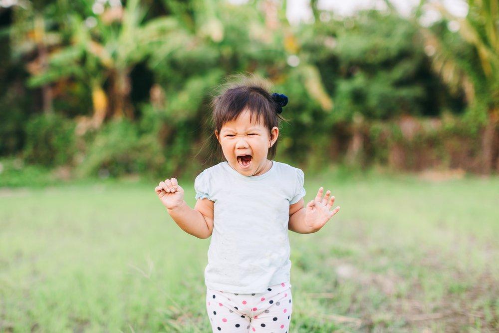 toddlertantrum.jpeg (image_D4Glcdg.webp)