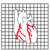 Three Rivers Cardiac Institute  Avatar
