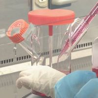 新型コロナ 予防接種の基本方針 来月中にも策定へ