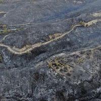Meerdere doden en veel gewonden door bosbranden in Turkije