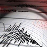 Son dakika! Yeni Zelanda açıklarında şiddetli deprem