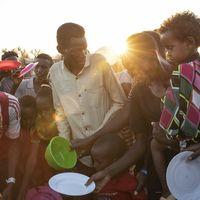 'We just ran': Ethiopians fleeing war find little relief