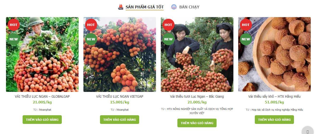 Vải thiều Lục Ngạn được bán trên trang web dacsanlucngan.vn.