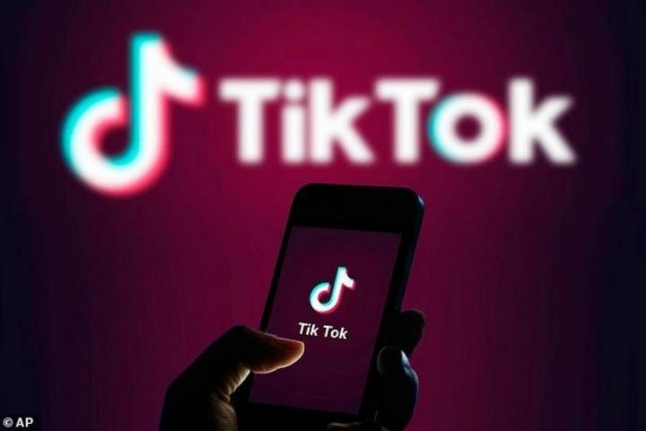 Thành công của Tiktok đã chứng minh nền tảng này không chỉ là trào lưu nhất thời của giới trẻ.