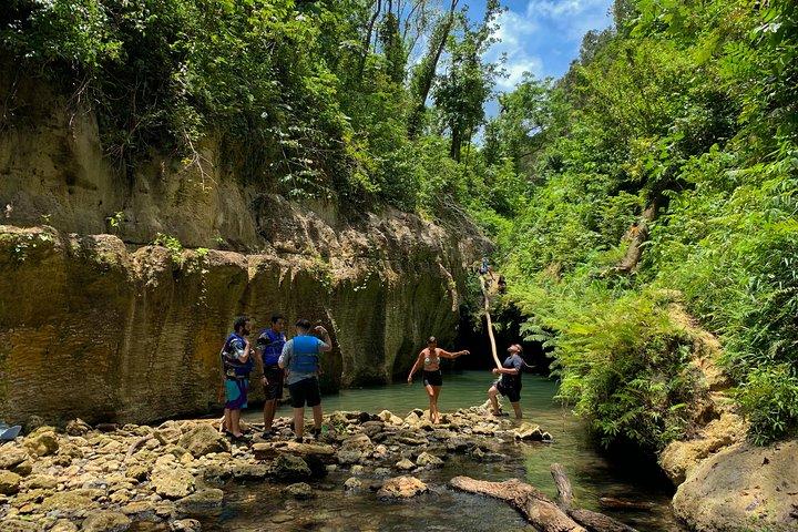 Đứng thứ 5 trong danh sách là tour khám phá hang động Arenales ở Puerto Rico.