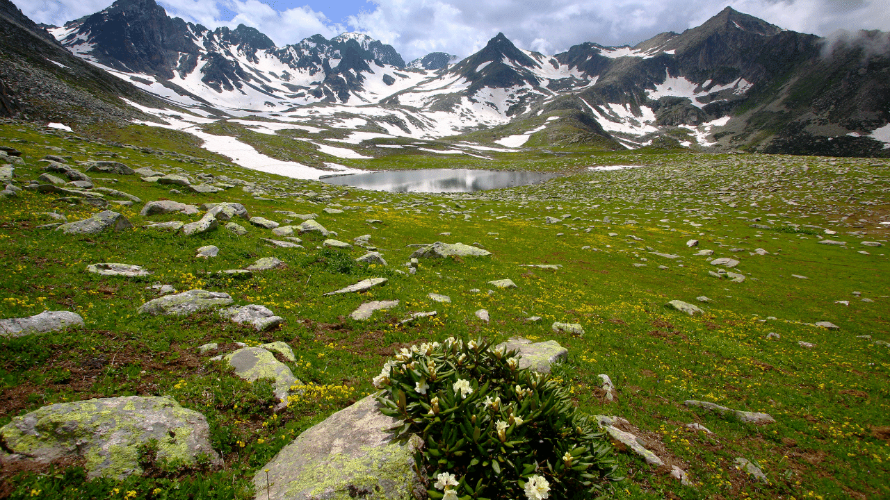 Kackar Mountains with traces of snow and green on surface level