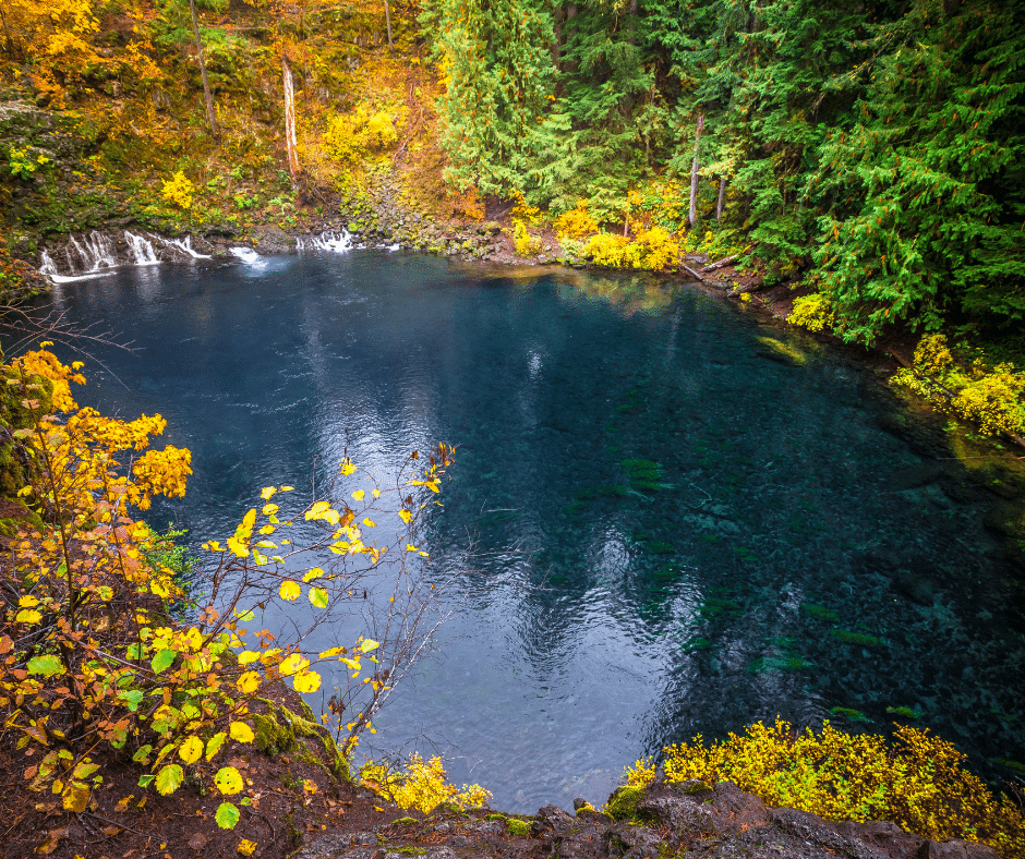 tamolitch blue pool surrounded by fall foliage