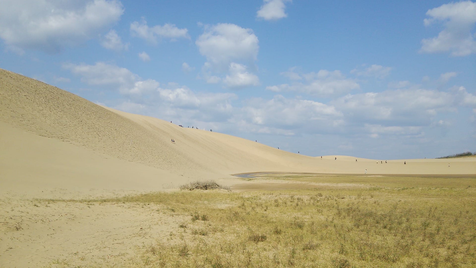 Tottori Sand Dunes - People can be seen to be climbing a sand dune