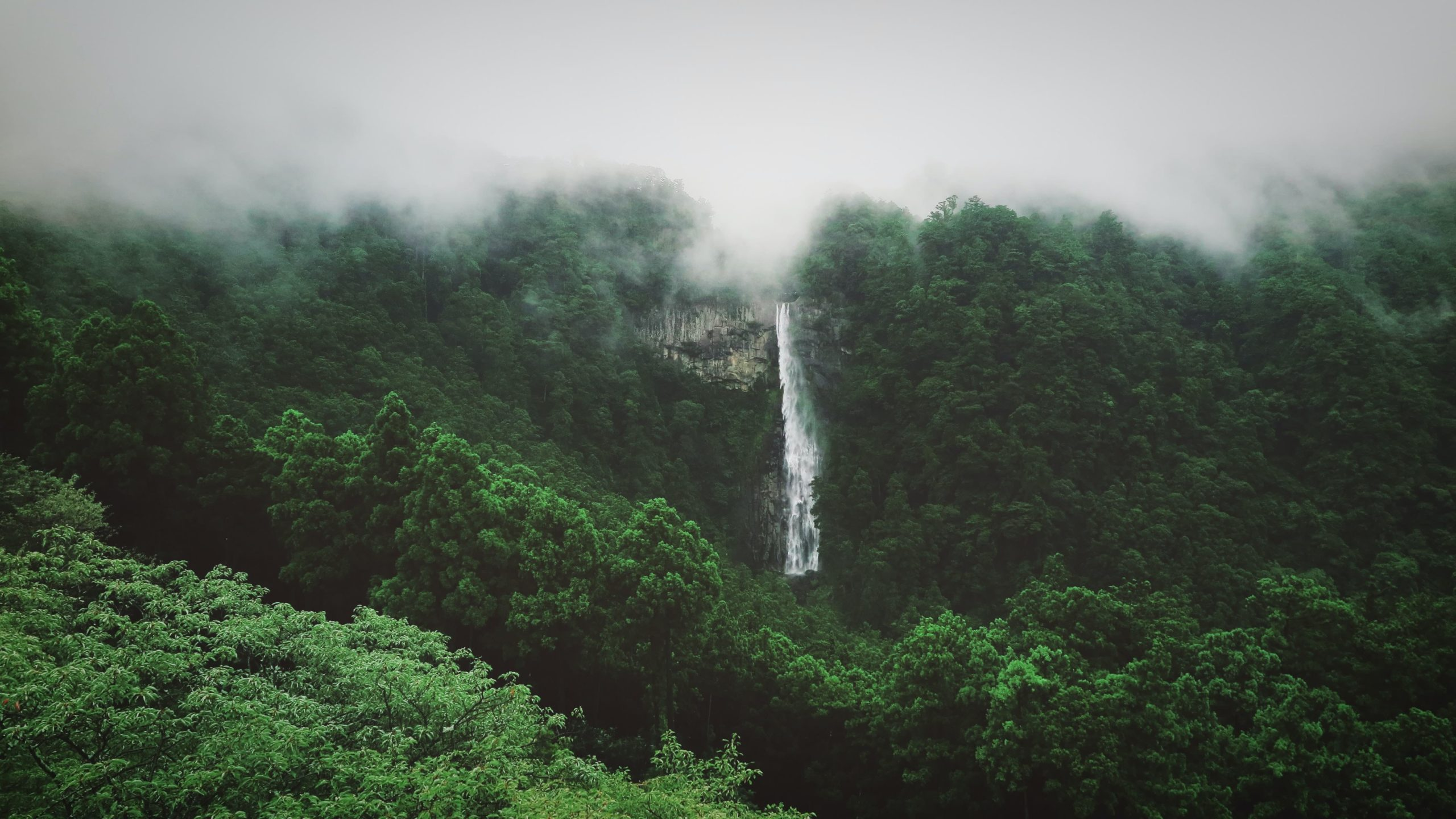 Nachi Falls in Japan - A foggy scene with green hills and a water fall