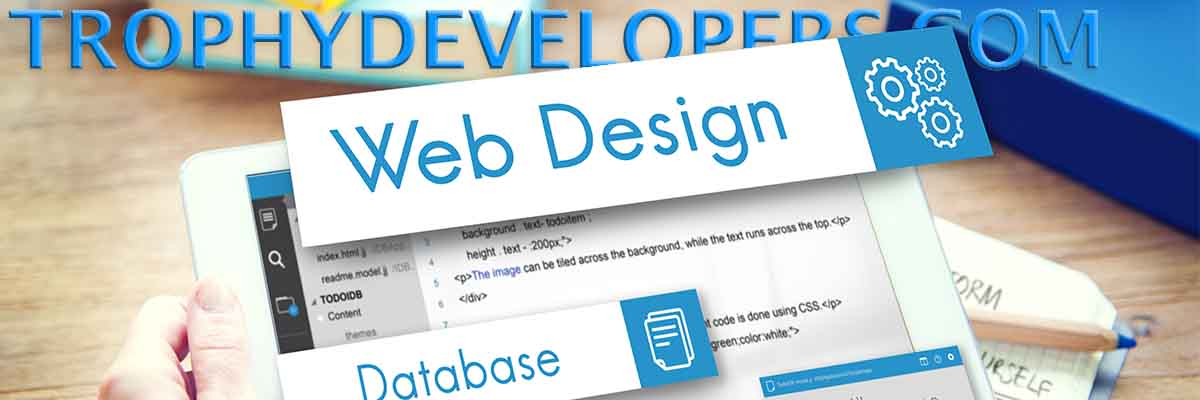 Website Design that drives results