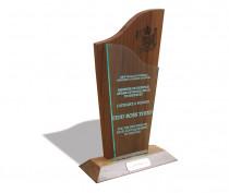 Defence Award