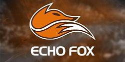 Riot prodá slot patřící Echo Fox