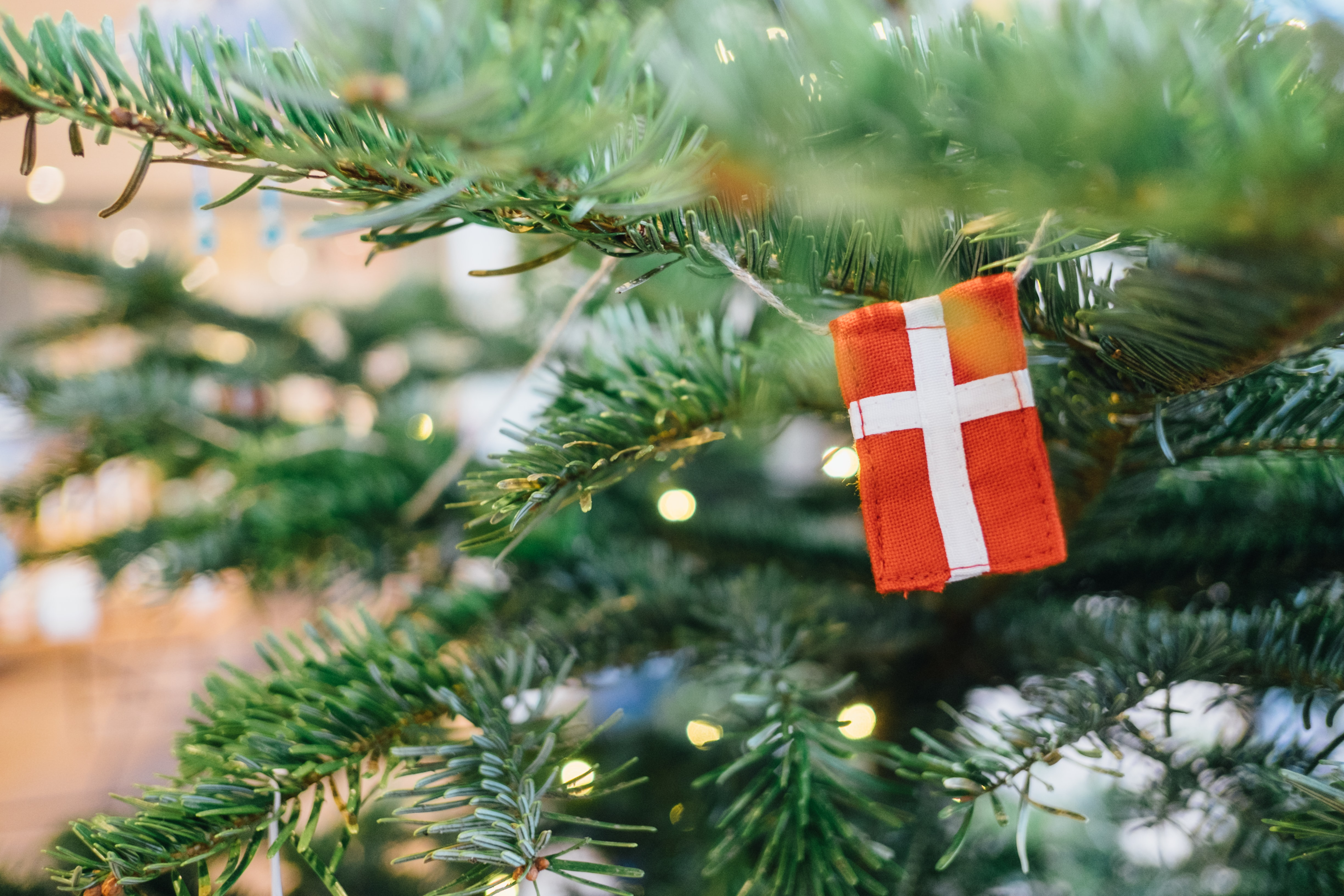 Travel to Denmark with your tree decorations!