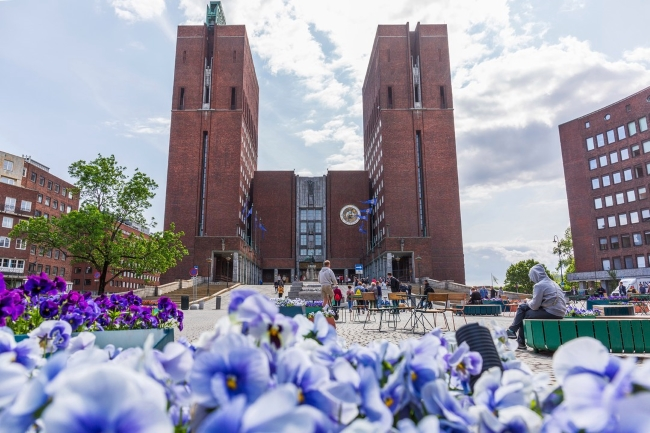 Purple and white pansies with Oslo City Hall in background