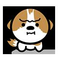 シーズー犬かぼちゃん