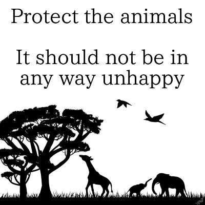 Protect the animals