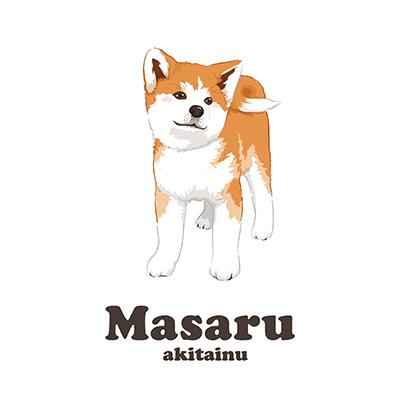 秋田犬マサル Tシャツ グッズ(秋田犬保存会公認)