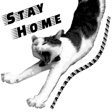 STAY HOME CAT