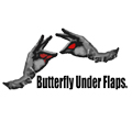 Butterfly Under Flaps.