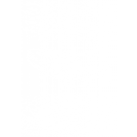 BROWN TROUT_W(両面プリント)