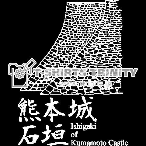 熊本城の石垣/濃色