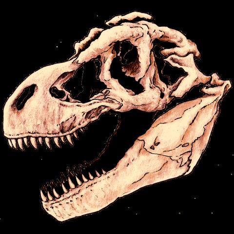 ティラノサウルス・彩色A