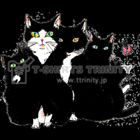 仲良し黒白猫-猫竹