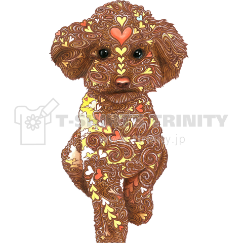 Lovely toy poodle