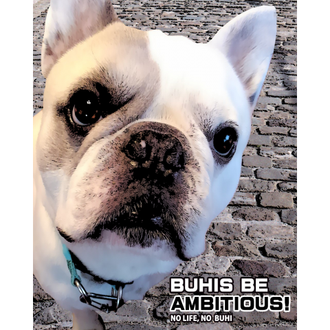 BUHIS BE AMBITIOUS!