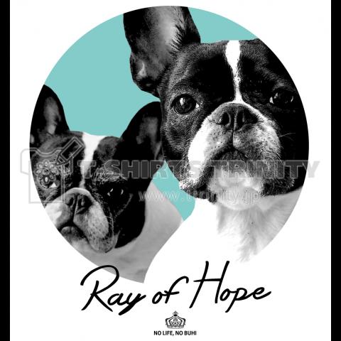 Ray of Hope(アイスグリーン)
