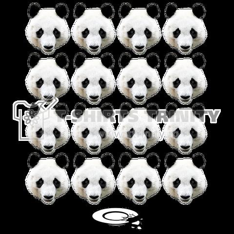 パンダ整列