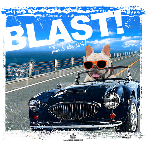 BLAST!(トート)