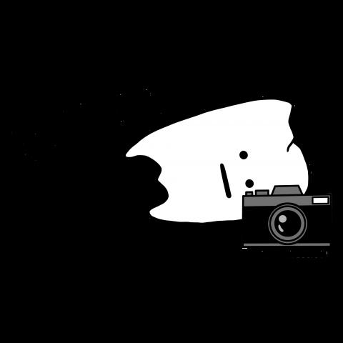 まよこカメラマンしらず