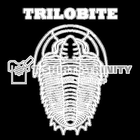 三葉虫(TRILOBITE:トライロバイト)