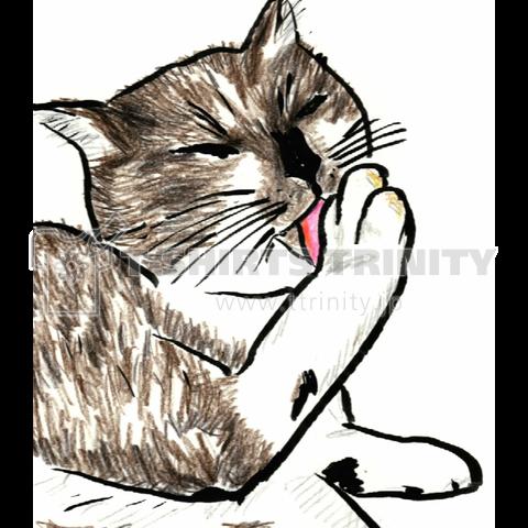 絵画風猫Tシャツ(お手入れ)