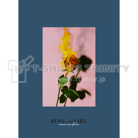 Rose on Fire - NAVY